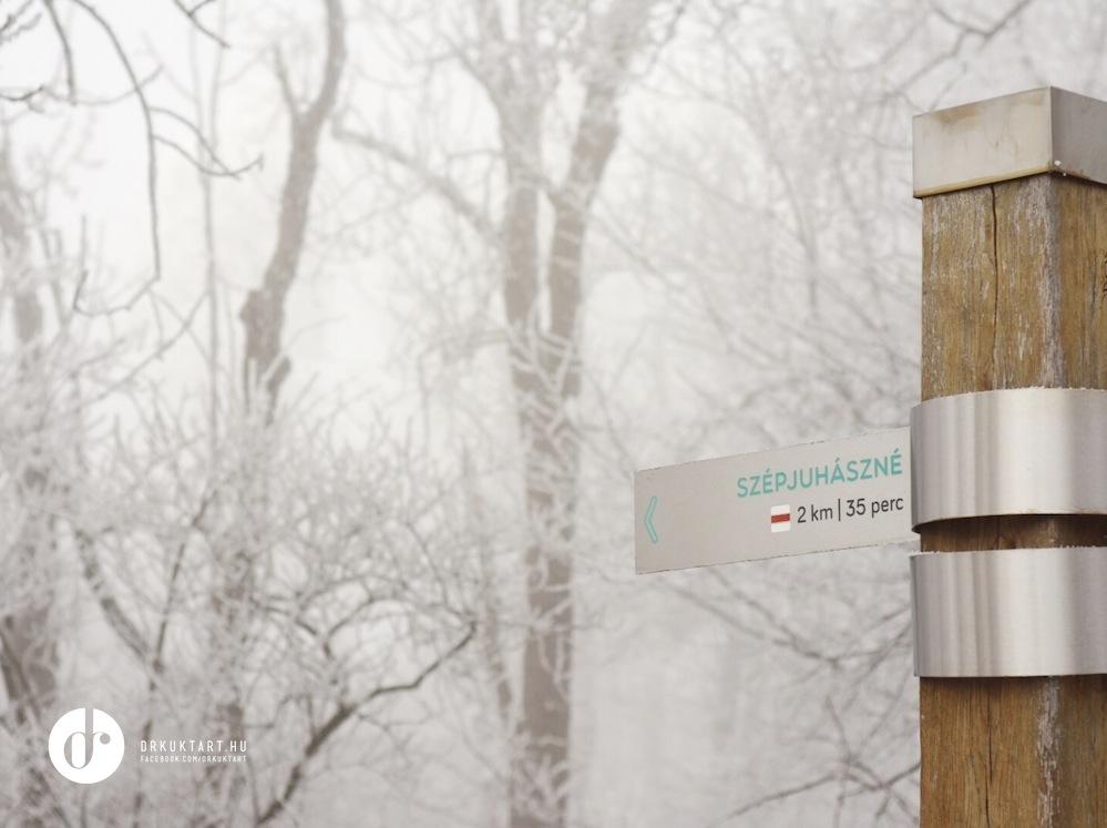 drkuktart_budapest2020januar_22_ja_noshegy.JPG