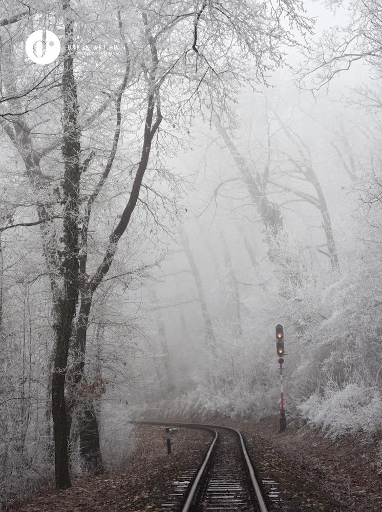 drkuktart_budapest2020januar_30_sze_pjuha_szne.JPG
