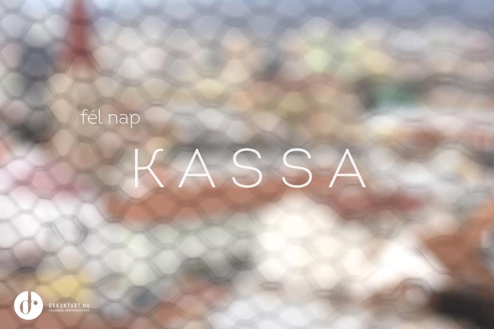 drkuktart_kassa_kosice01.jpg