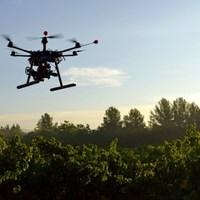Fenntartható gazdálkodás a levegőből - erdőgazdálkodás drónokkal