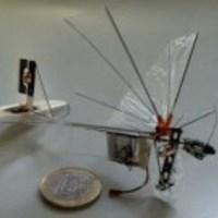 DelFly Explorer: repül, mint a madár