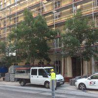Fanyűvők - Újabb kormányzati beruházás írtja a belvárosi fákat