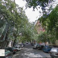 Kivágják az összes Semmelweis utcai fát