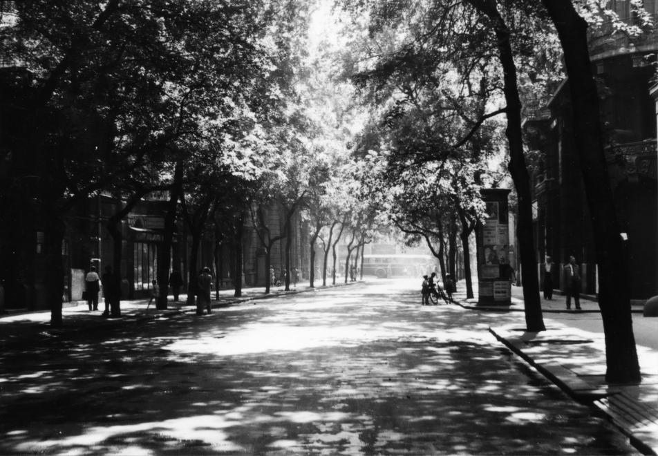 semmelweis_utca_1955.jpg