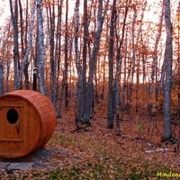 Itt van az ősz, itt van újra....