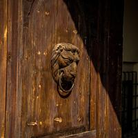 Az oroszlán esete a borral