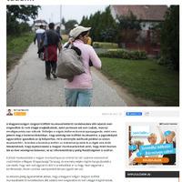 migránsok, vendégmunkások, hűhó