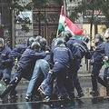csürhe, bátorak a demokráciáért, csőcselék, hősök