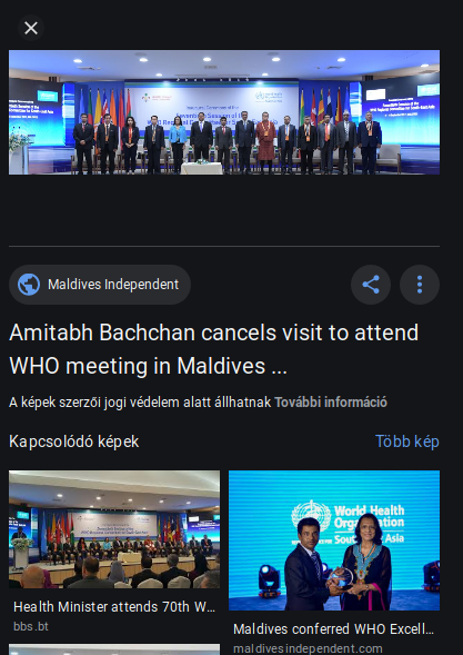whocmmittee_conference_2017_hulhumale_google_kereso.png