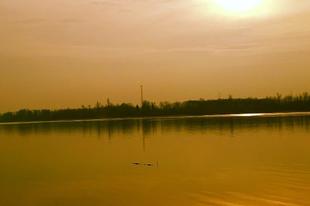 Első futás a Duna-parton