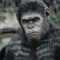 A majmok bolygója - Forradalom (Dawn of the Planet of the Apes) - 2. magyar előzetes