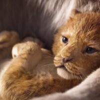 Az oroszlánkirály (The Lion King) - magyar előzetes