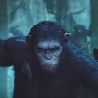 A majmok bolygója - Forradalom (Dawn of the Planet of the Apes) - magyar előzetes