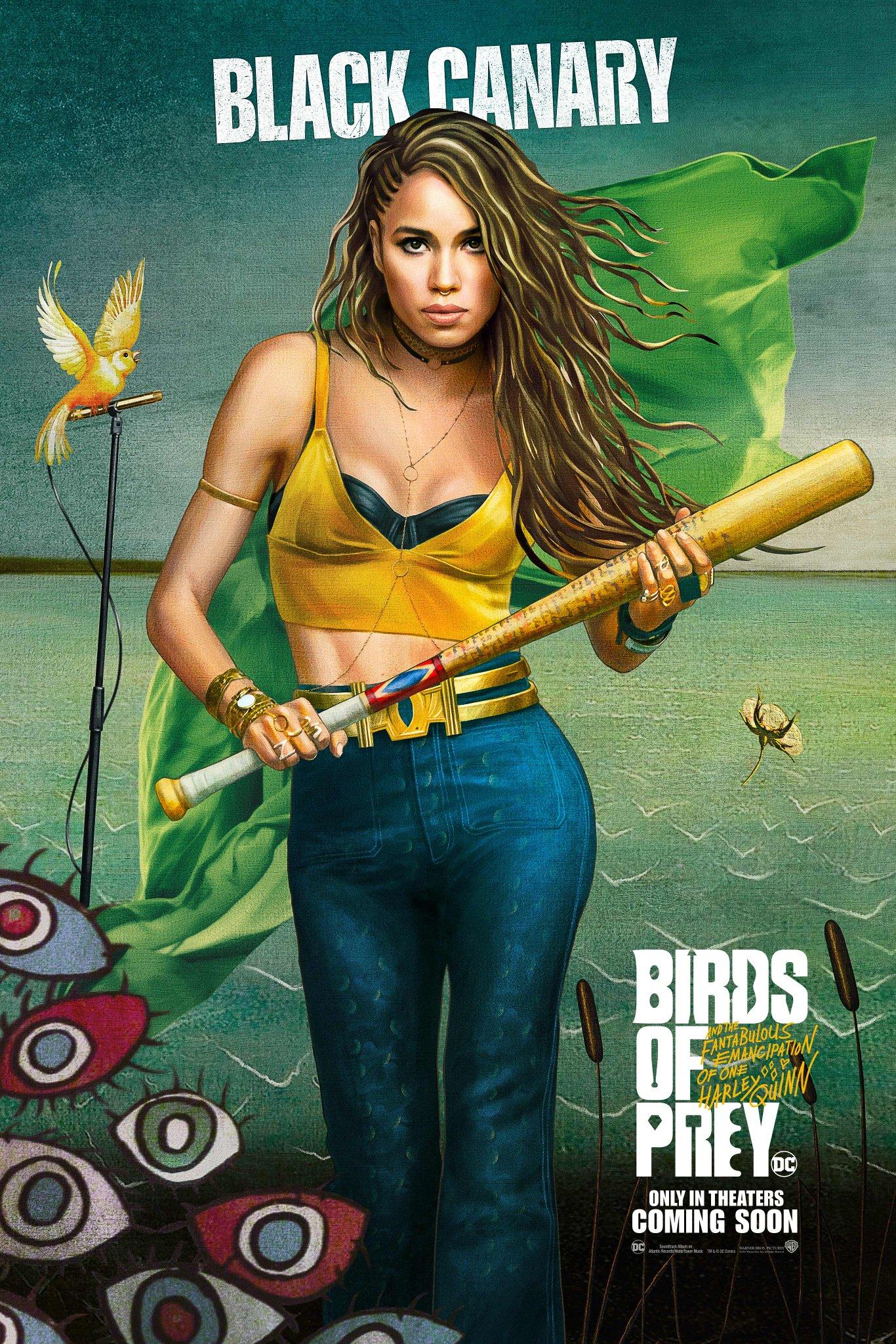 birds_of_prey_p9.png