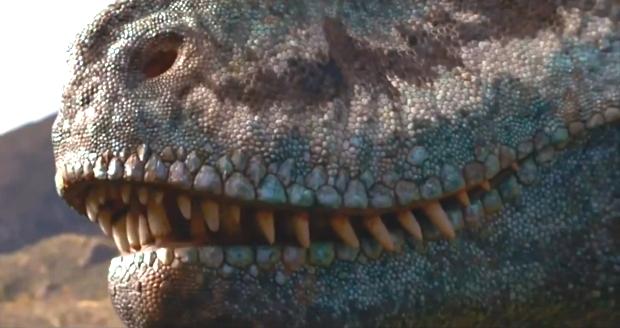 dinoszauruszok_3D.jpg