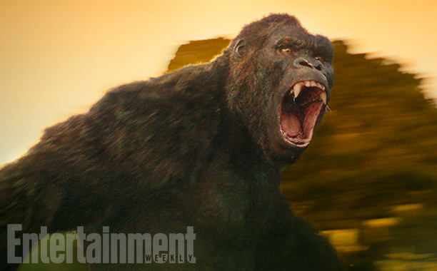 kong_first_look.png