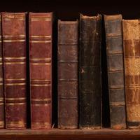Könyvespolcaim