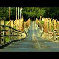 Csongrád természeti értékei (HD)