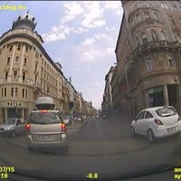 Francia a budapesti rengetegben