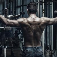 Izomcsoportok edzése: A vállizom