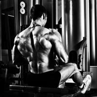 Izomcsoportok edzése: A hátizom