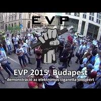 EVP 2015 - videók, beszéd, stb :)