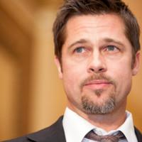 109 ökoházat adományozott Brad Pitt