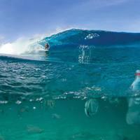 Egyszerű megoldás az óceánok megtisztítására