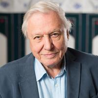 Klímaváltozás David Attenborough, a világ egyik legismertebb természettudósa szerint