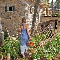 Üdülőközpont, saját olívaültetvénnyel