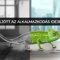 Zöld út a nemzetközi szintű ügyfélszolgálatoknak
