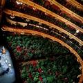 Növényeknek tartott koncerttel nyitott újra a barcelonai opera