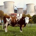 Az USA és az EU megpróbálja fékezni a globális metánkibocsátást
