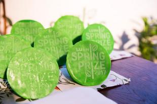Megnyílt a nevezés lehetősége a 2018-as Lush Spring Díjra