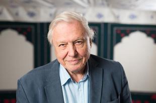 David Attenborough is üzent a G7 csúcs vezetőinek: most kell cselekedni