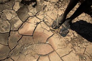 Végéhez közeledik a COP21