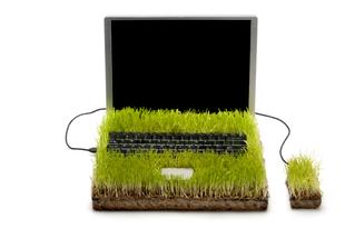 Zöld iroda tippek: Így csökkenthetjük a céges papírmennyiséget