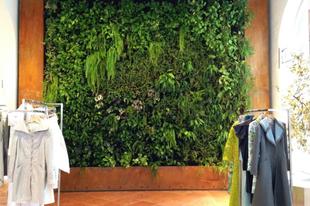 Vertikális kertet minden irodába!
