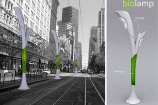 Biolamp – magyar megoldás a szmog ellen