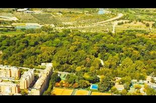 Erdővel veszik körbe Madridot, hogy így küzdjenek a klímaváltozás ellen