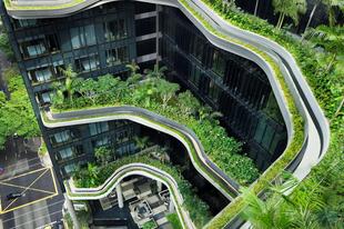 Elképesztő ütemben zöldülnek a felhőkarcolók Szingapúrban