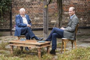 """David Attenborough és Vilmos herceg létrehozták a környezetvédelem """"Nobel-díját"""""""