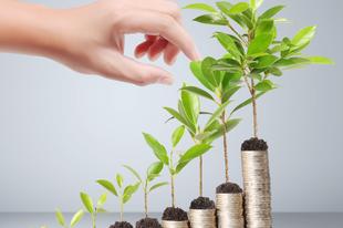 Miért érdemes Környezettudatos Befektetéseket választanunk?