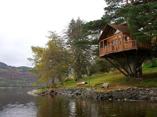 tree_house_2_.jpg