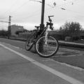 Én és a biciklim