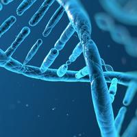 A különbség a sikeres és a nem sikeres ember között az az idő, amit önsajnálattal tölt - avagy nem minden a genetika...!