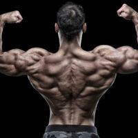 Melyik a legjobb hátizom gyakorlat?