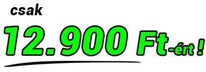 12900.jpg
