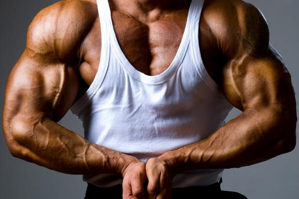 bicepsz.jpg