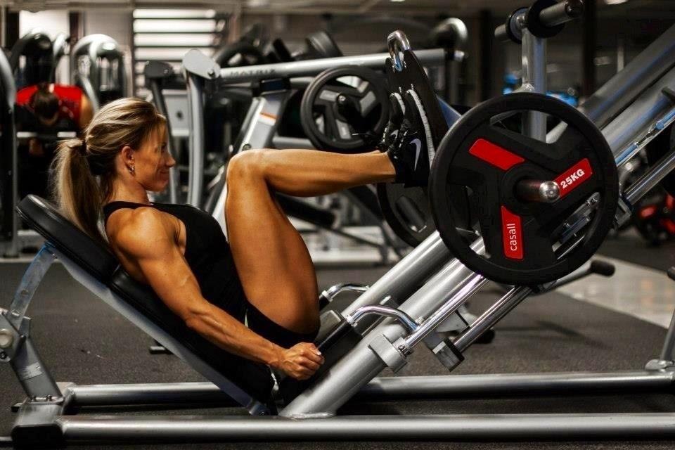 leg-training2.jpg